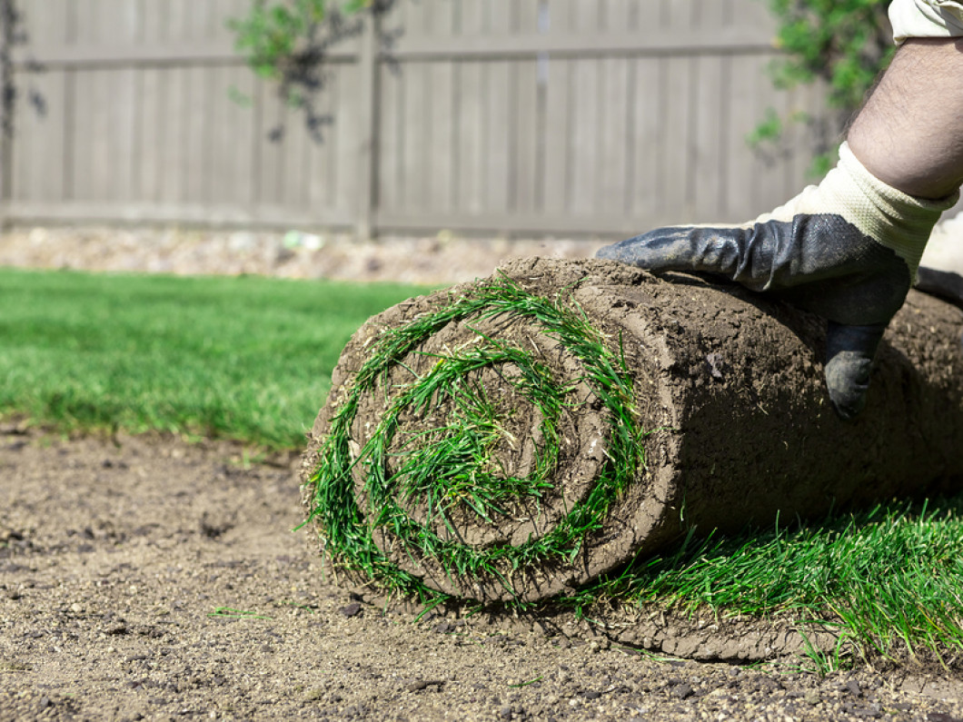 Does Your Lawn Need Some Help?